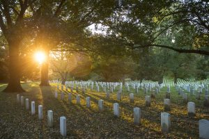 Arlington National Cemetery (part of an article by Kate Dolan)